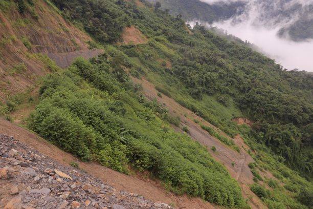 affected forest land at bhalok;  ADB funded road project  in August 2019