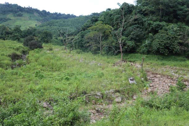 affected agriculture land at bhalok  ;  ADB kangchup to tamenglong road in August 2019