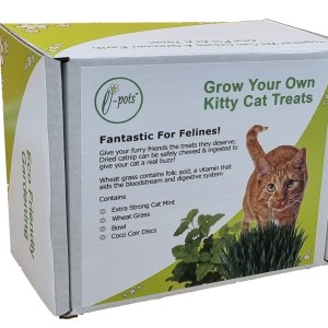 Cat Grass_New Box