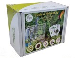 e-pots 'Taste of Adventure' Grow your own exotic herbs gift set