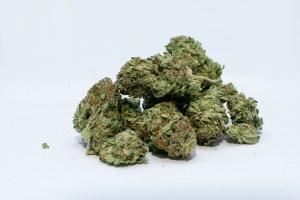 marijuana-e-shisha