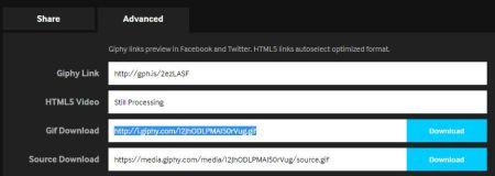 copiar url GIF de Giphy