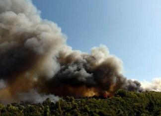 Κόλαση στη Ζήρεια Αχαΐας: Η φωτιά έκαψε σπίτια - Εκκενώθηκαν οικισμοί και μια κατασκήνωση - Δύσκολη μάχη για την Πυροσβεστική (βίντεο)