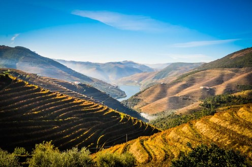 Spectacular vista at UNESCO World Heritage classified Douro Valley