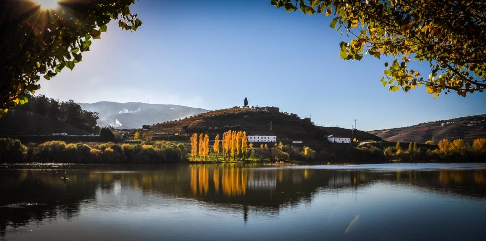 The austere silhouette of Sandeman, perched on a hill top on a beautiful autumn afternoon in the Douro valley