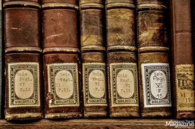 Check out the many different labels on the books, testifying to the collection's diverse history
