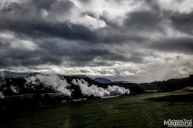 Strathspey Railway has an old steam locomotive that goes through the national park