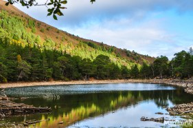 """Our hike led us into the woods and up to An Lochan Uaine, which means """"small green loch"""""""