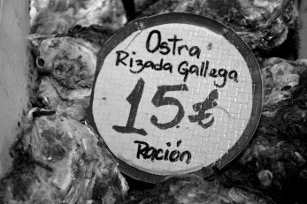 The Galicia oysters are the best I've had in my life. Juicy, tasty, a bliss for all five senses