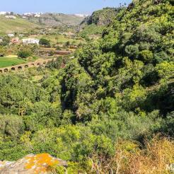 The Botanic Garden Jardín Canario Viera y Clavijo celebrates the diverse nature of the Canary Islands