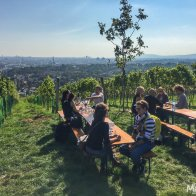 City Hiking Path 1 offers amazing views of Vienna from the hills of Nußberg
