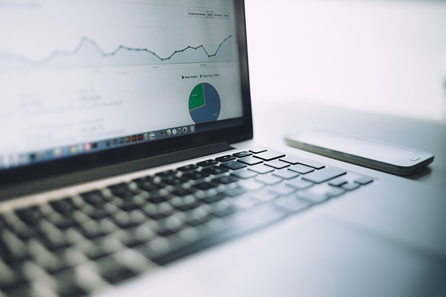Web Analytics Professional