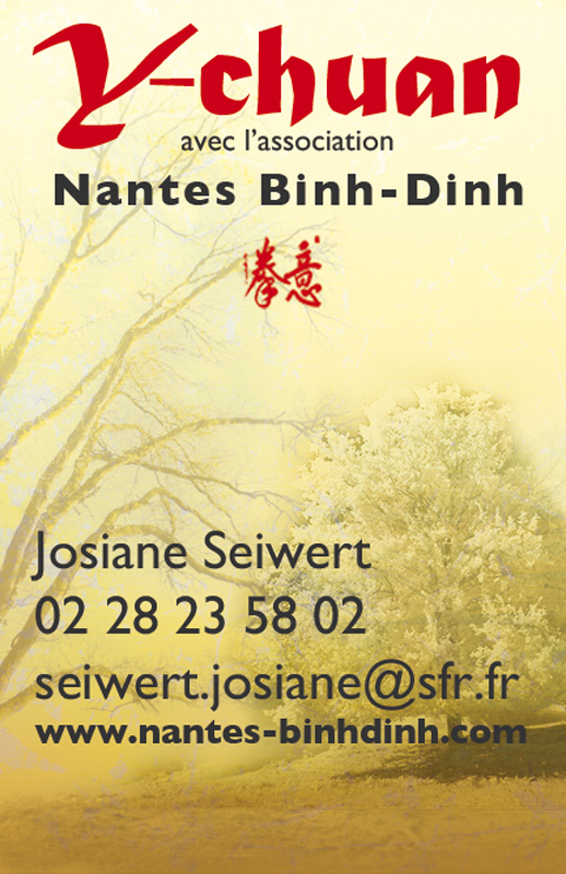 Association Nantes Binhdinh Cartes De Visites Affiches Flyers
