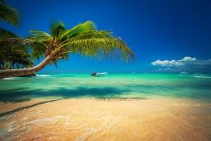 beach image 3 - beach-image-3