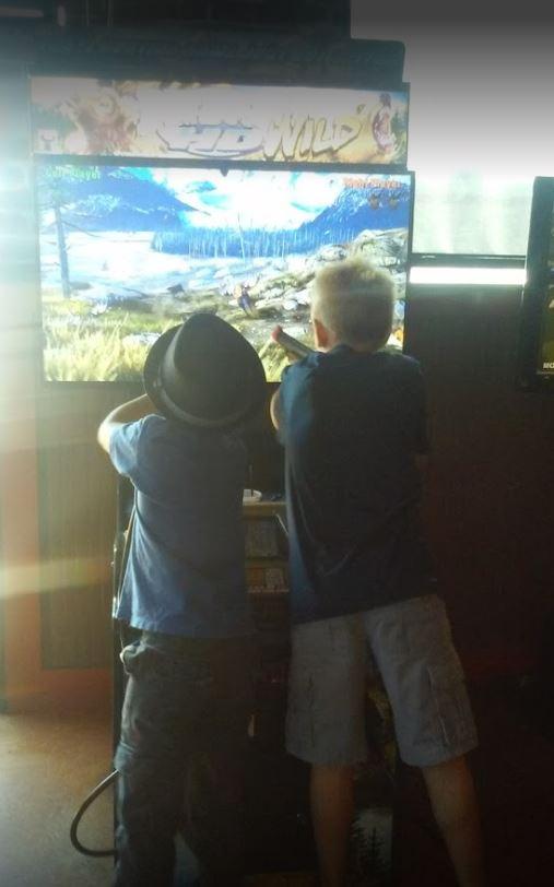 Big Buck HD arcade