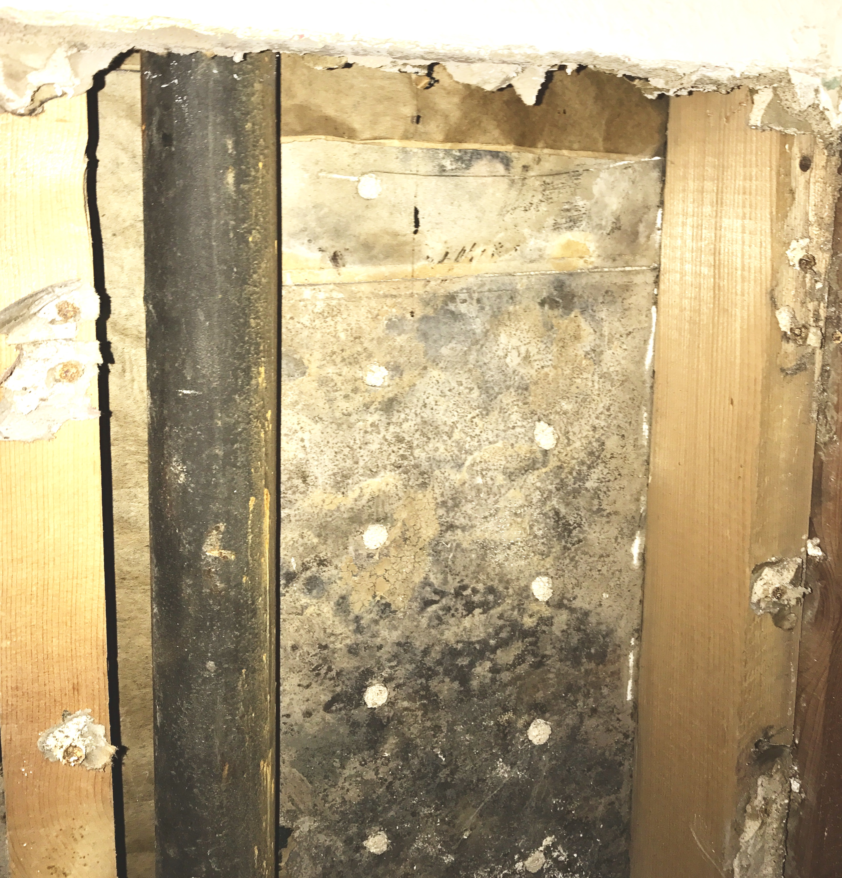 Mold Harzard Removal Service From EA Restoration