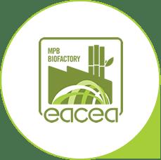 A produção econômica de mudas MPB para viabilizar o plantio – Diretor da EACEA Andrés da Silva