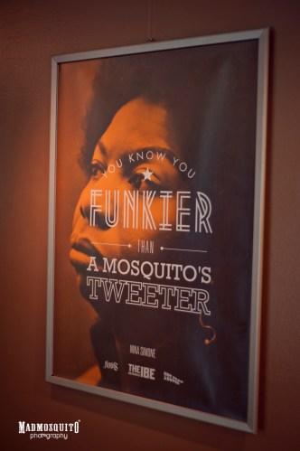 mosquito - IBE 2013