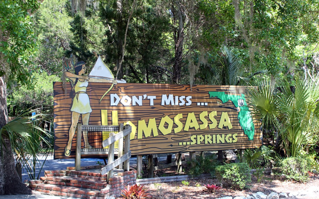 Homosassa Springs Wildlife State Park