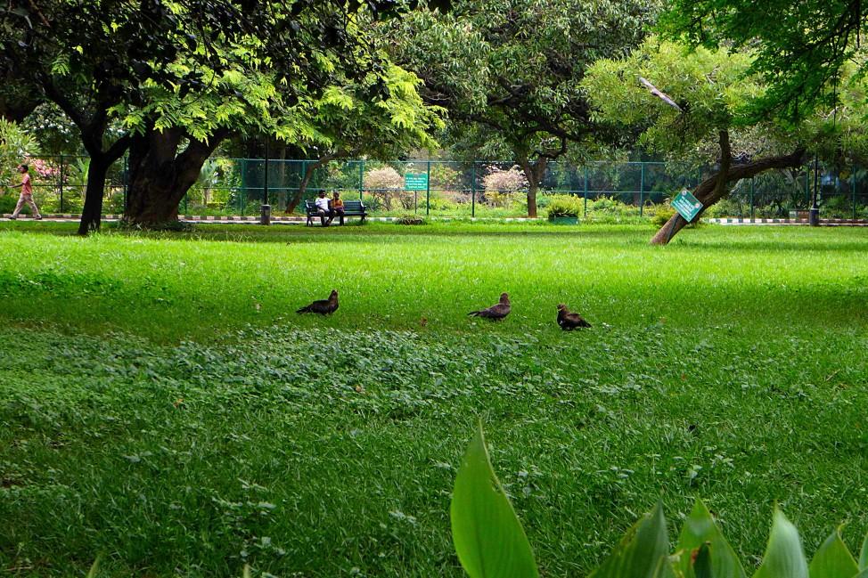 Lal Bagh Gardens, Bangalore