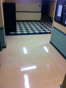 floor care cleaning service eagle