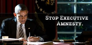 Stop Executive Amnesty