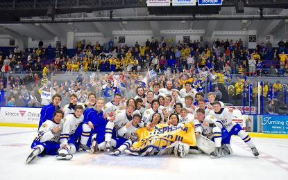 Wildcats beats Cougars for sectional hockey title in OT