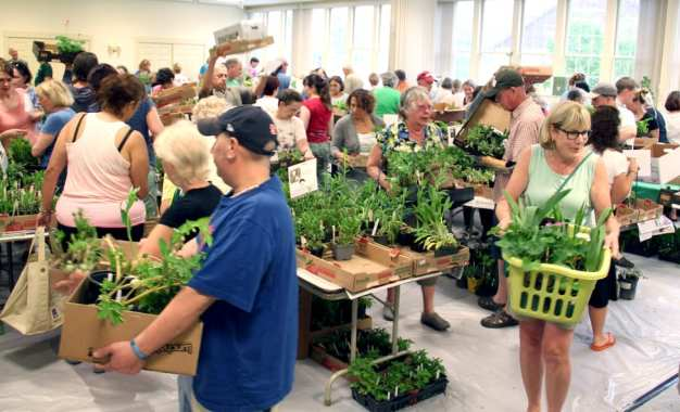 Fayetteville Trinity Plant Sale to be held May 13