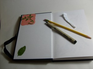 my zentangle notebook kit