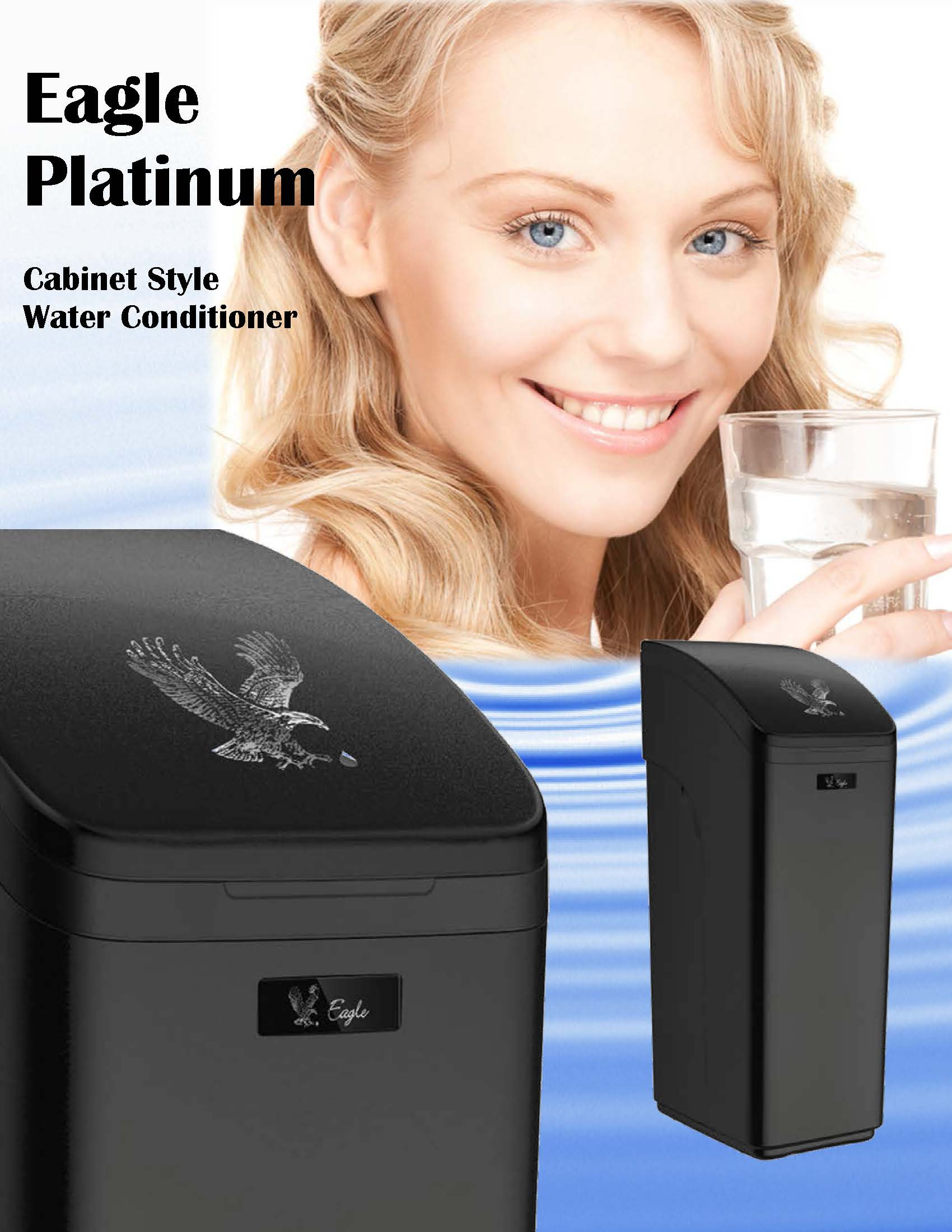 Home Water Conditioner Eagle Platinum Whole Home Water Conditioner Soft Clean Truly