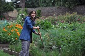 Volunteers grow crops in Walpole Park's walled kitchen garden.