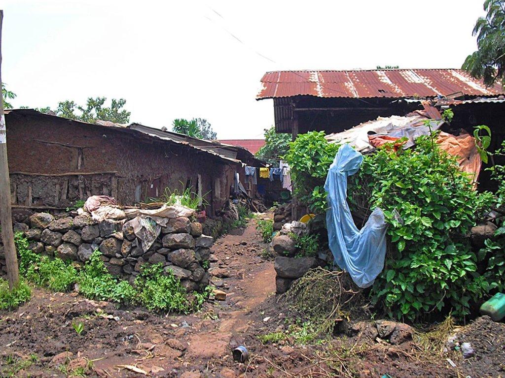 via di Bahir Dar-Bahir Dar-Amara region-Etiopia-Africa