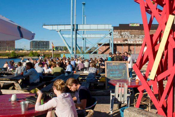 roest-pub roes-pub amsterdam-Amsterdam-Olanda-Holland-Paesi Bassi-Europa