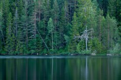 Falkasjön