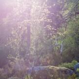 Trolldalen, sol ovanför ravinen