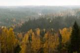 Kilsbergsskogar