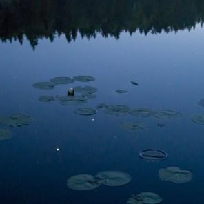 Stjärnorna speglar sig i sjön som irrbloss
