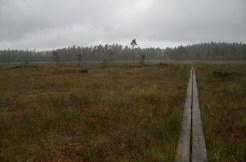 Norra Ånnabodasjön