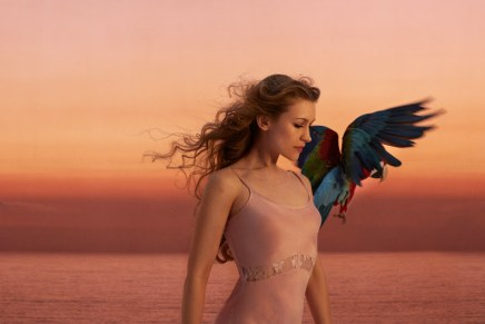 Joanna Newsom Announces North American Tour