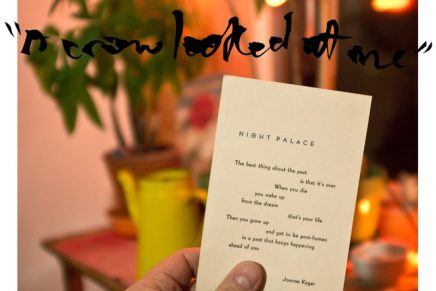 """Mount Eerie – """"A Crow Looked At Me"""" Review"""