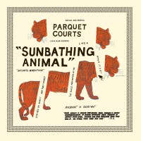 sunbathing animal parquet courts