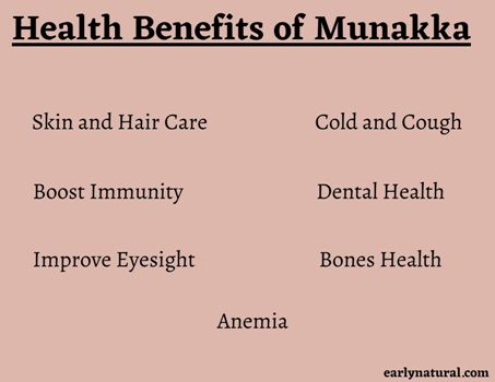 You Should Check this Top 7 Munakka Benefits