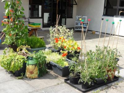 gardening-2
