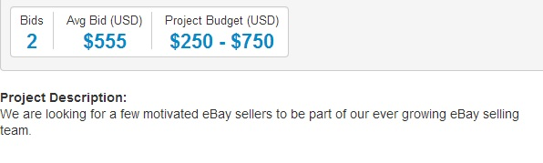 Freelancer - Ebay Seller-Earn Money Online by Working as a Freelancer