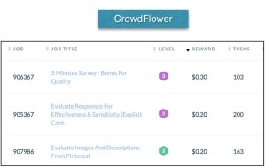 Type-of-work-on-crowdflower