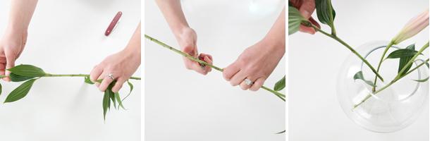 beginner blooms workflow - lilies
