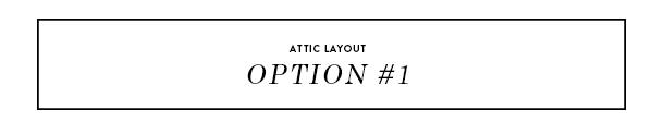 attic option 1