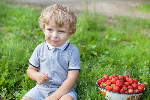 toddler sitting on green grass with basket of berries