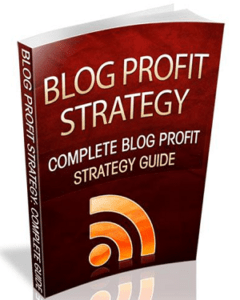 Blog Profit Strategy