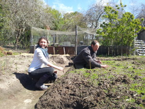 Planting and sowing